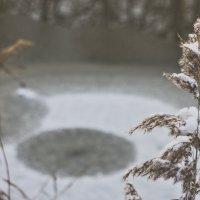 Зимняя Яуза :: олег свирский