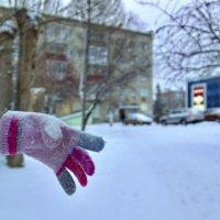Пропала хозяйка, перчатки хозяйка... устала на ветке ... перчатка висеть... :: Михаил Полыгалов
