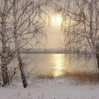 Березки, Ангара, закат :: Nikolay Svetin