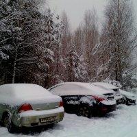 снежные авто :: Владимир