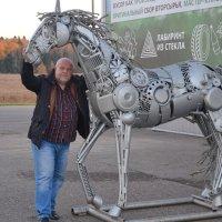 Железный конь. :: Михаил Столяров