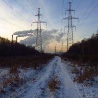 Первый день зимы у меня :: Андрей Лукьянов
