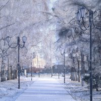 Зимняя красота :: Nastya 777