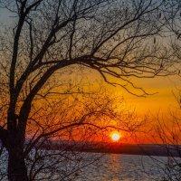 Предзимье, грустная пора, уходит осень, смыты краски... :: Виктор Малород