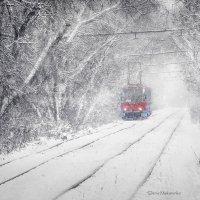 туннель в зиму :: Denis Makarenko