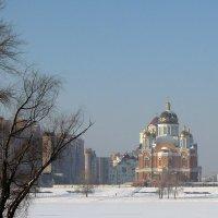 Покровский собор в начале зимы :: Тамара Бедай