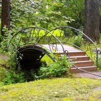 Мостик в Ботаническом саду. :: Лия ☼