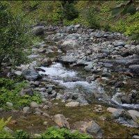 Горная река в Абхазии :: Максим Минаков