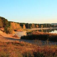 Осень Осень как же ты прекрасна :: Линка Седых