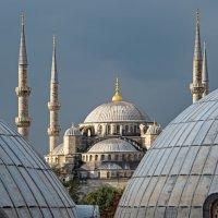 Голубая мечеть или мечеть Султанахмет. Стамбул. Турция. :: Павел Сытилин