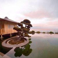 Японский сад... :: Сергей Леонтьев