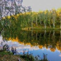 Это осень. :: Ольга