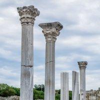 Колонны античного храма :: Светлана Андрюшина