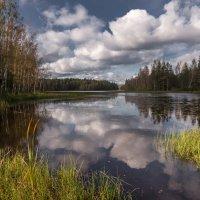 Озеро Исо-Ийярви. Карелия. :: Наталия Владимирова