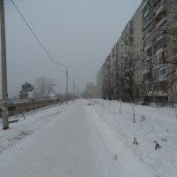 Зима пришла :: Александр Подгорный
