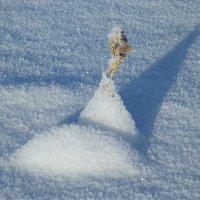 Снежные пирамидки :: Светлана Рябова-Шатунова