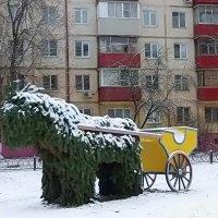 В Раменском, Моск.обл. :: Елена