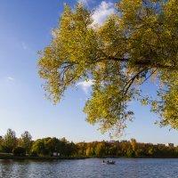 осень :: Петр Беляков