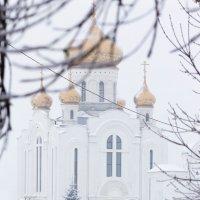 Снежное утро :: Ирина Холодная