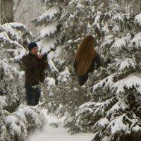 Зимние картинки. фото-3. :: Nata