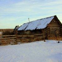 Старый дом с поникшей крышей... :: Нэля Лысенко