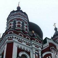 Свято-Пантелеймоновские купола. :: Sergii Ruban