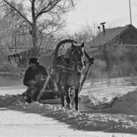 Деревенские мотивы 1 :: Светлана Рябова-Шатунова