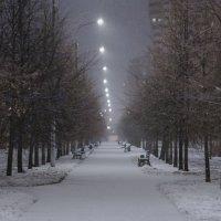 Зима :: Андрей Кузнецов