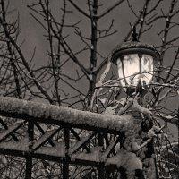 Ночь, зима, фонарь.. :: марк