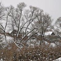 зимняя деревня :: павел бритшев