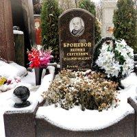 Год назад 9 декабря ушёл из жизни Броневой Леонид Сергеевич. :: Татьяна Помогалова