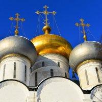 Новодевичий монастырь :: Константин Анисимов