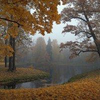 Тишина Осеннего утра... :: Наталья