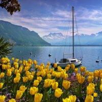 Женевское озеро :: Elena Wymann