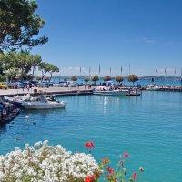 Итальянские сосны, голубое небо,сверкающее озеро :: Лира Цафф