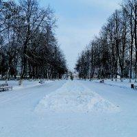 Зимняя аллея! :: ирина