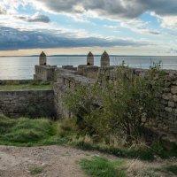 Вид на башню и Керченские ворота. :: Анатолий Щербак