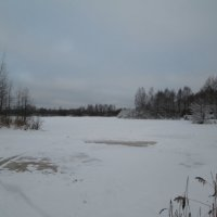 Озеро в лесу :: Антон Завьялов