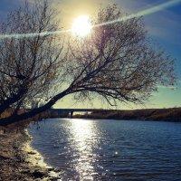закат на реке :: Наталья Рублева