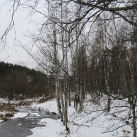 В середине декабря :: Елена Павлова (Смолова)