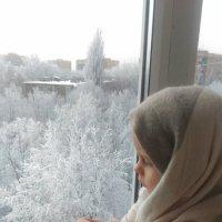 Зимнее утро :: Светлана Окорокова