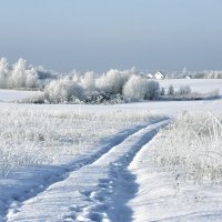 Зимний день. :: Oleg S