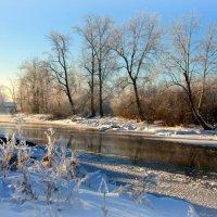 Примеряя  зимние наряды... :: Нэля Лысенко
