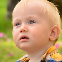 Малыш :: Ksenia Ozdemir