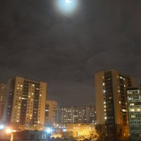 night :: Елена Елена