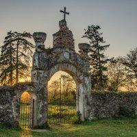 Ворота в храм :: Светлана Винокурова