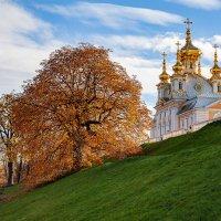 Золотая осень в Петергофе :: Олег Денисов