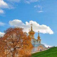 Осень в Петергофе :: Олег Денисов