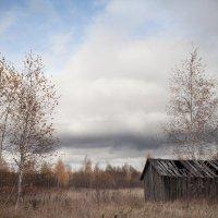 Ноябрь :: Игорь Кожевников