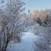 Зимние узоры :: Рашид Рахимов
